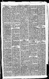 Newbury Weekly News and General Advertiser Thursday 17 June 1869 Page 3