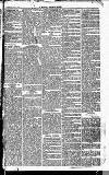 Newbury Weekly News and General Advertiser Thursday 30 December 1869 Page 7