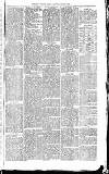Exmouth Journal Saturday 07 August 1869 Page 7