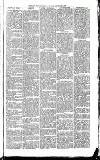Exmouth Journal Saturday 11 September 1869 Page 5