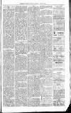 Exmouth Journal Saturday 12 March 1881 Page 3