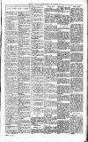 Exmouth Journal Saturday 02 September 1905 Page 3