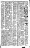 Cardigan & Tivy-side Advertiser Friday 06 December 1889 Page 3
