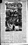 Cardigan & Tivy-side Advertiser Friday 23 June 1911 Page 5