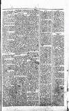 Alcester Chronicle Saturday 20 January 1872 Page 5