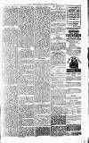 Alcester Chronicle Saturday 09 June 1877 Page 3