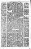 Alcester Chronicle Saturday 09 June 1877 Page 5