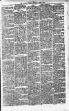 Alcester Chronicle Saturday 12 March 1881 Page 5