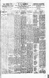 Denbighshire Free Press Saturday 22 June 1895 Page 3
