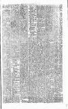 Denbighshire Free Press Saturday 13 July 1895 Page 7