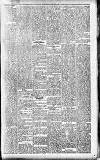 Hamilton Herald and Lanarkshire Weekly News Wednesday 31 October 1906 Page 5