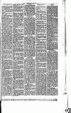Abergavenny Chronicle Saturday 13 September 1873 Page 7