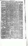 Abergavenny Chronicle Saturday 27 September 1873 Page 5