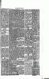 Abergavenny Chronicle Saturday 18 April 1874 Page 5