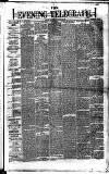 Dublin Evening Telegraph Saturday 26 January 1878 Page 1