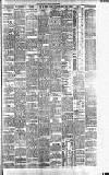 Dublin Evening Telegraph Tuesday 29 January 1889 Page 3