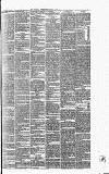 Surrey Gazette Tuesday 01 June 1875 Page 7
