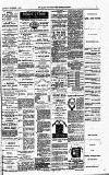 Croydon Chronicle and East Surrey Advertiser Saturday 14 November 1885 Page 7