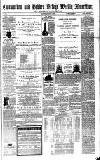 Todmorden Advertiser and Hebden Bridge Newsletter Saturday 01 July 1871 Page 1