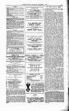 Clifton Society Thursday 01 November 1894 Page 13