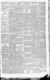Worthing Gazette Wednesday 13 November 1889 Page 5