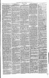 Christchurch Times Saturday 22 January 1881 Page 7