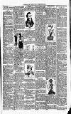 Christchurch Times Saturday 17 February 1900 Page 7