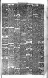 Bournemouth Guardian Saturday 29 September 1883 Page 5
