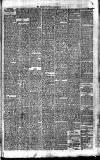 Bournemouth Guardian Saturday 17 November 1883 Page 5
