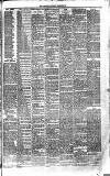 Bournemouth Guardian Saturday 22 December 1883 Page 3