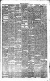 Bournemouth Guardian Saturday 22 December 1883 Page 7