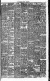 Bournemouth Guardian Saturday 26 January 1884 Page 7