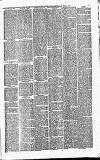 Luton Reporter Saturday 24 April 1875 Page 3