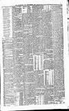 Luton Reporter Saturday 24 April 1875 Page 7