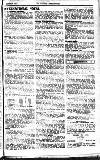 Woman's Dreadnought