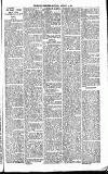 Henley & South Oxford Standard Saturday 24 January 1891 Page 3