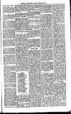 Henley & South Oxford Standard Saturday 24 January 1891 Page 7