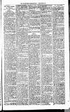 Henley & South Oxford Standard Saturday 21 February 1891 Page 3