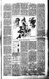 Millom Gazette Saturday 25 June 1892 Page 3