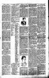 Millom Gazette Saturday 23 July 1892 Page 3