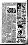 Millom Gazette Saturday 30 July 1892 Page 6