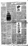 Millom Gazette Saturday 06 August 1892 Page 3