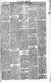 Henley Advertiser Saturday 03 October 1874 Page 3