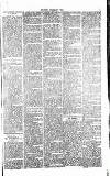 West Cumberland Times Saturday 02 May 1874 Page 7