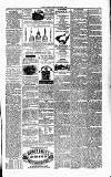 Ulverston Mirror and Furness Reflector Saturday 02 March 1872 Page 3