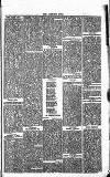 Norwood News Saturday 29 February 1868 Page 5