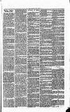 Norwood News Saturday 21 March 1868 Page 7