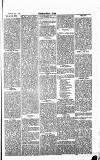Norwood News Saturday 16 May 1868 Page 5