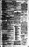 The Referee Sunday 02 September 1877 Page 7