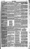 The Referee Monday 29 November 1880 Page 7